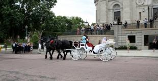 Louer une calèche à cheval pour son mariage : la bonne idée !