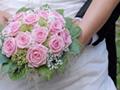 Fleurs et décoration