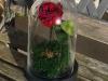 Imaginez une rose qui ne fane jamais, c'est possible chez Artifleurs