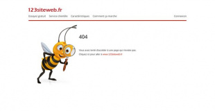 Salon du Mariage 2016 de Merville (31)