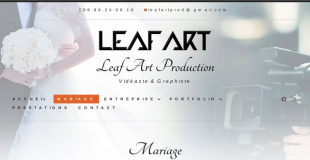 Leaf Art Production